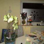 received 10206994388173084 Naturheilpraxis Aachen